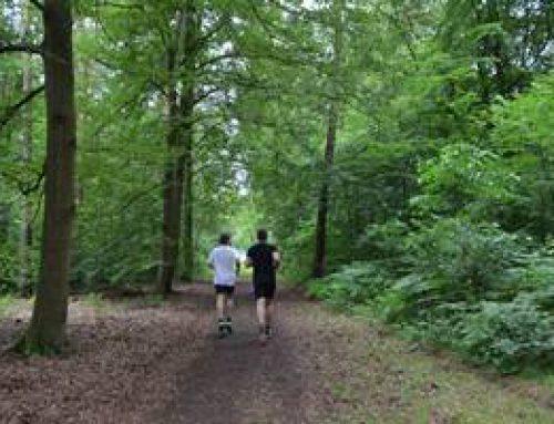 Mannheim: Neue Laufstrecken im Dossenwald