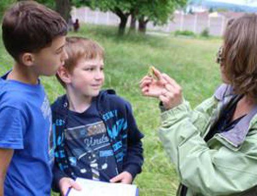 Sinsheim: Bildungsprojekt der Klimastiftung wird fortgesetzt